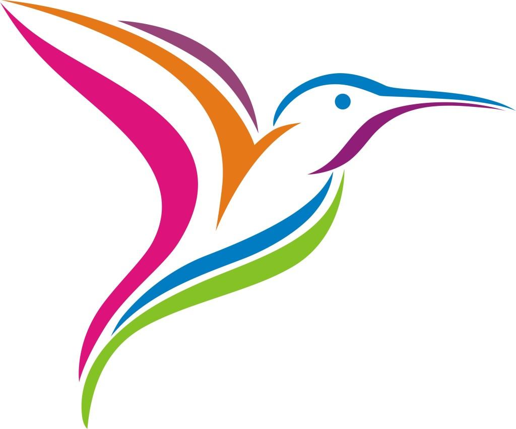 humming bird fly